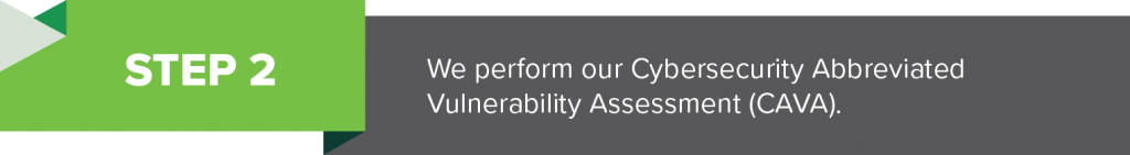 Step 2: We perform our Cybersecurity Abbreviated Vulnerability Assessment (CAVA).